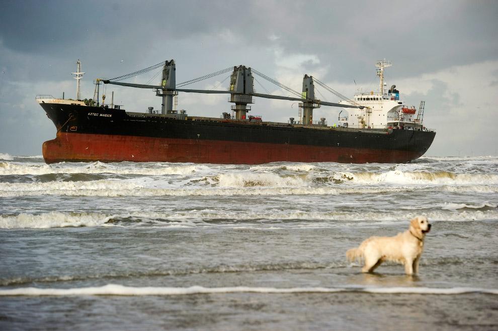 Филлипинский морской грузовик сел на мель у голландского побережья