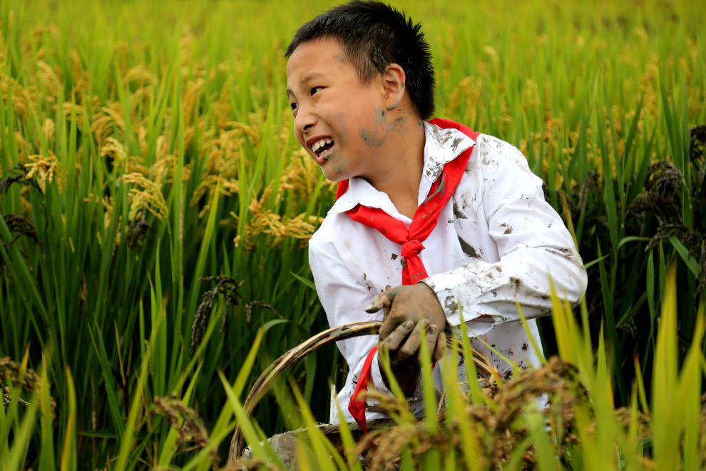 Победители конкурса National Geographic Kids 2015
