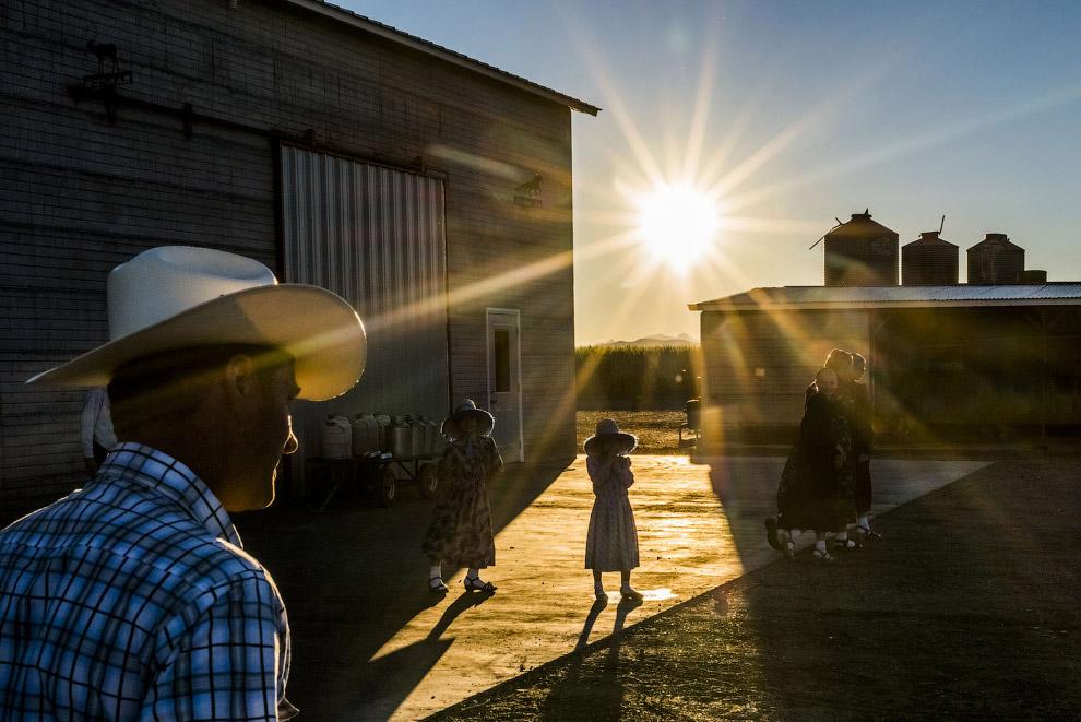 Мексиканские фермеры