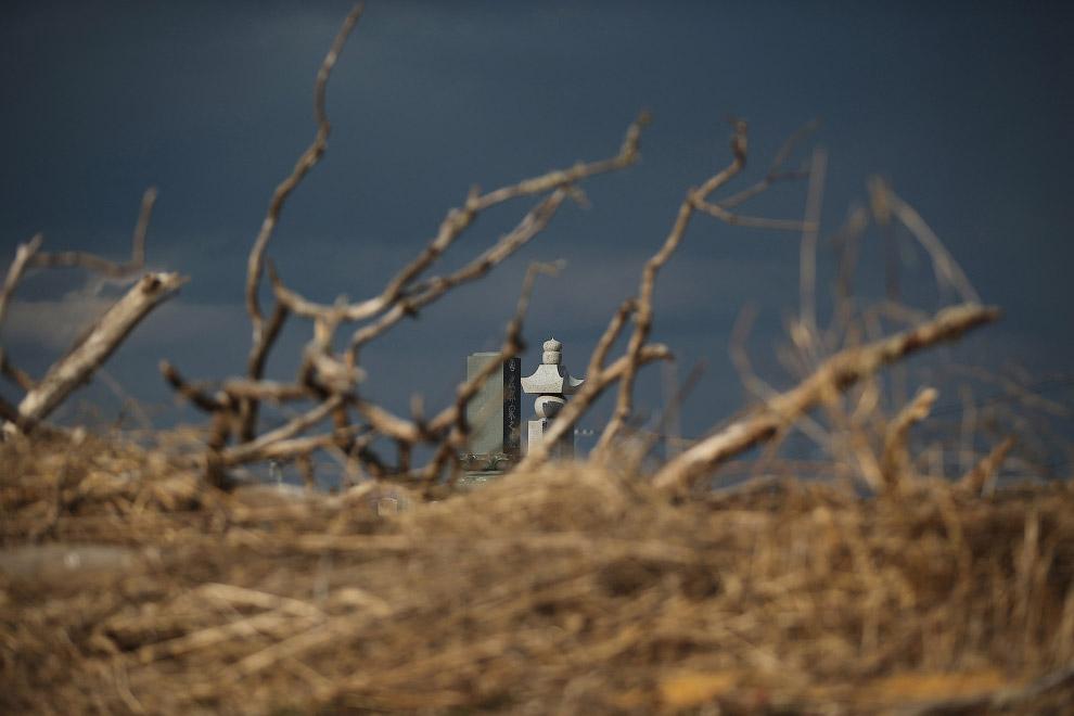 Кладбище рядом АЭС «Фукусима»