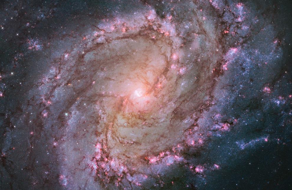 Спиральная галактика с перемычкой M83, также известная как Южная Вертушка