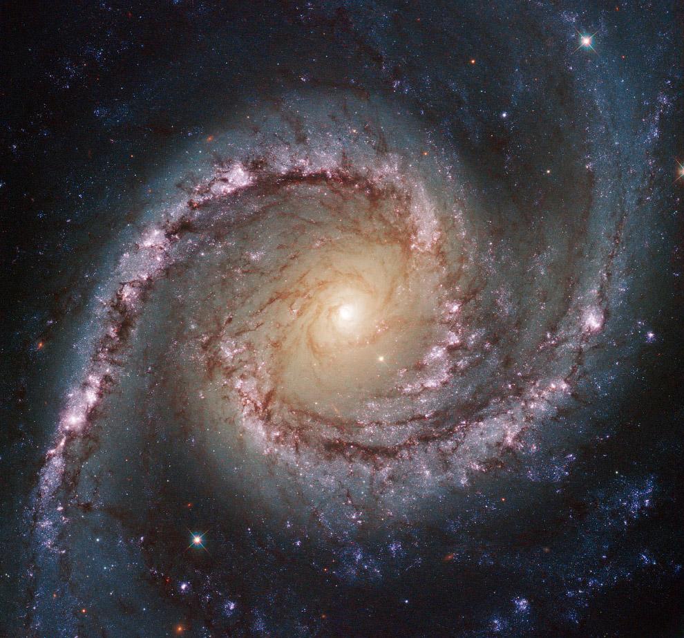 Галактика NGC 1566