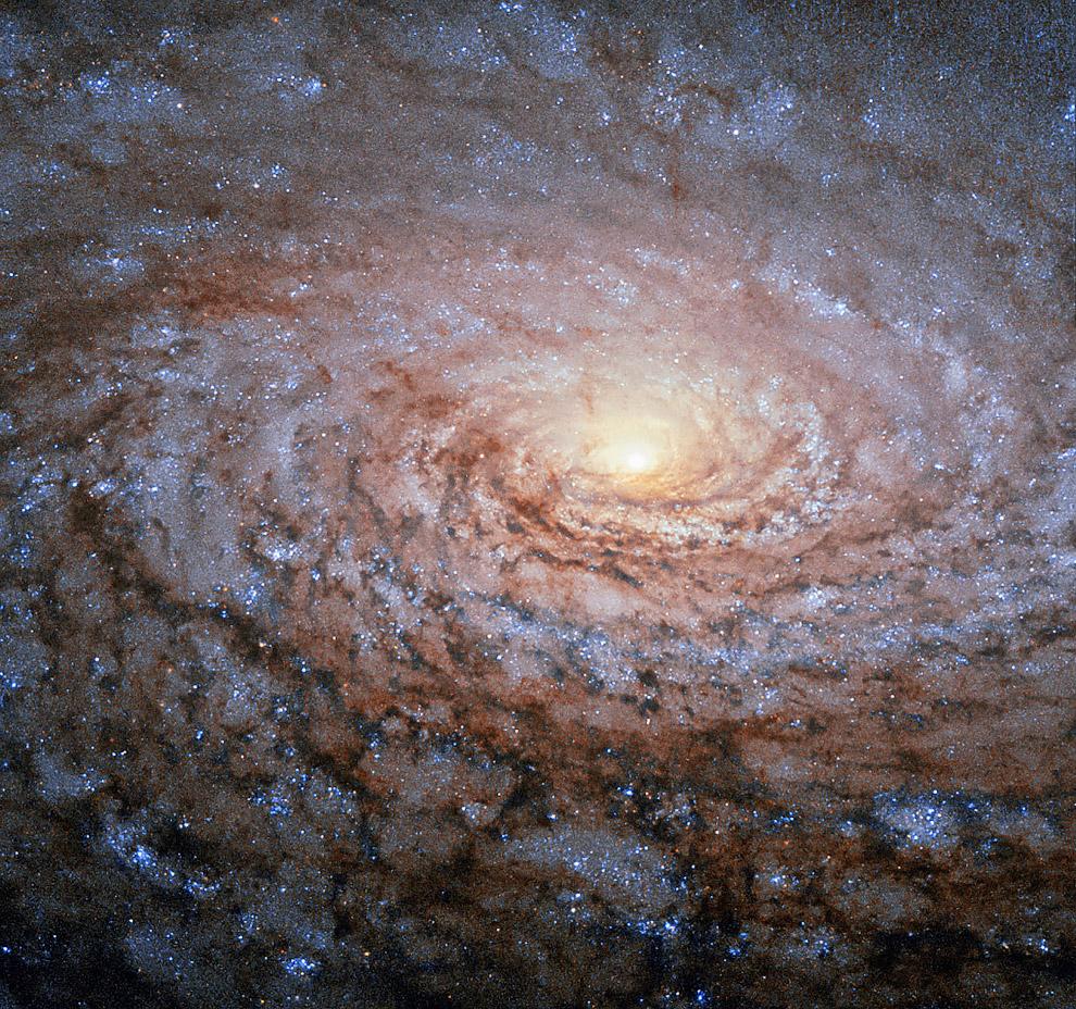 Галактика Подсолнух в созвездии Гончие Псы