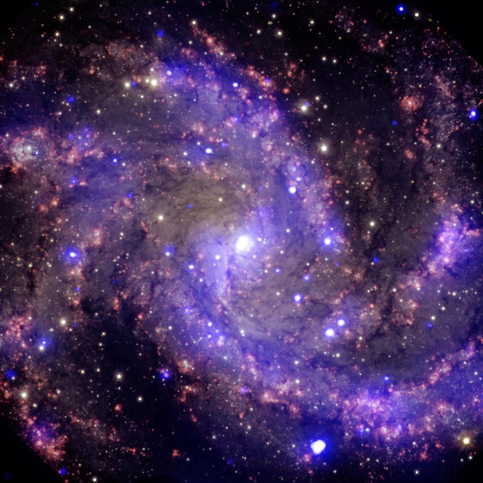 Спиральная галактика NGC 6946