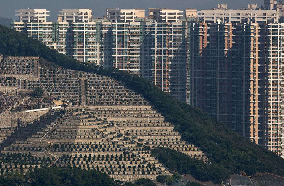 Могилы на холме и жилые кварталы