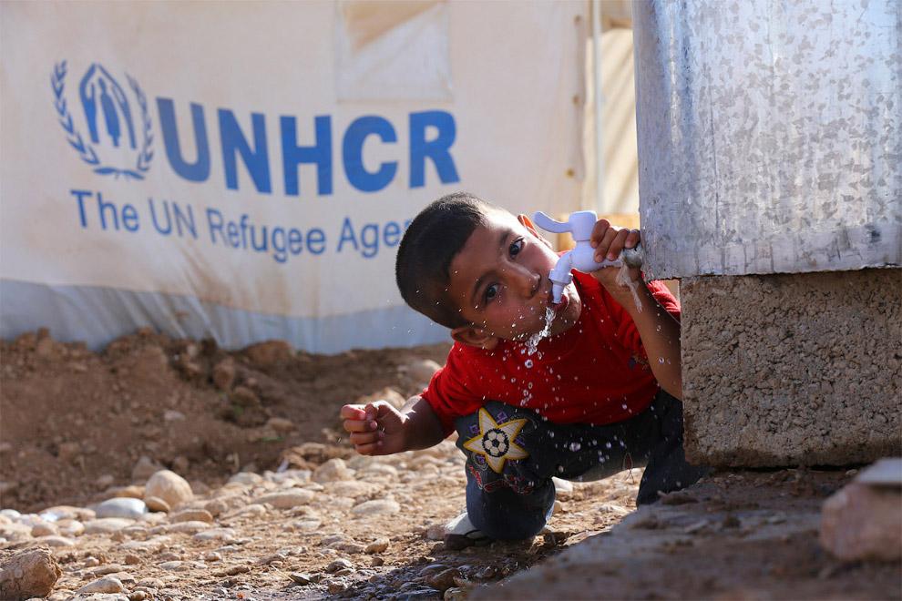 Привезли воду в лагерь беженцев на окраине города Эрбиль в Ираке