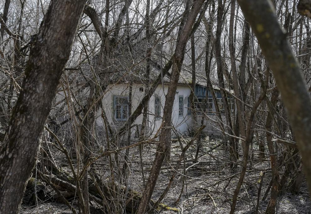 Заброшенное село Залесье вблизи Чернобыльской АЭС в Украине