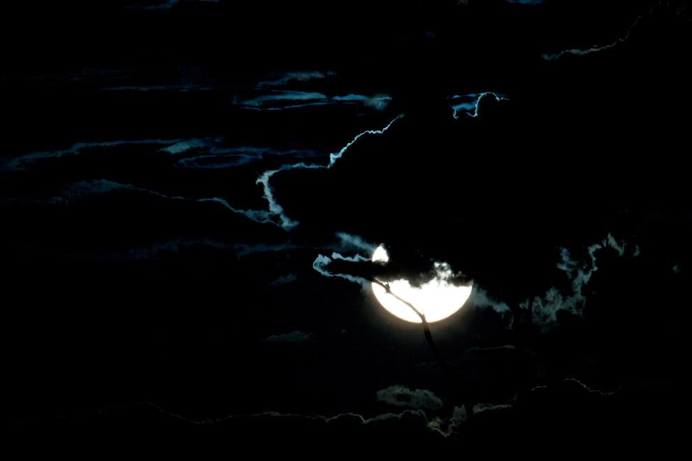 Ночь в национальном парке «Хванге» в Зимбабве