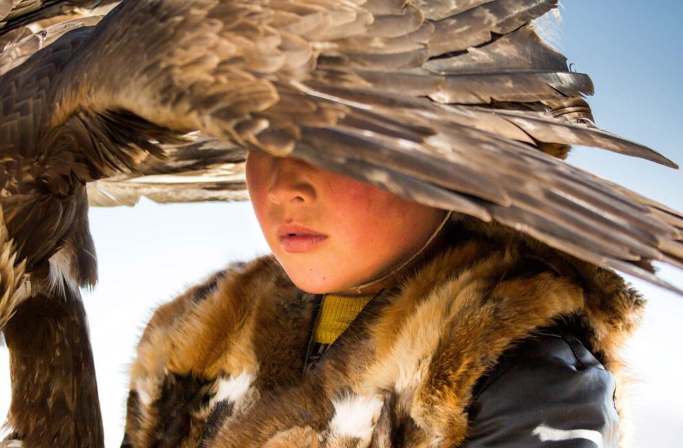 Фестиваль орлов, Монголия