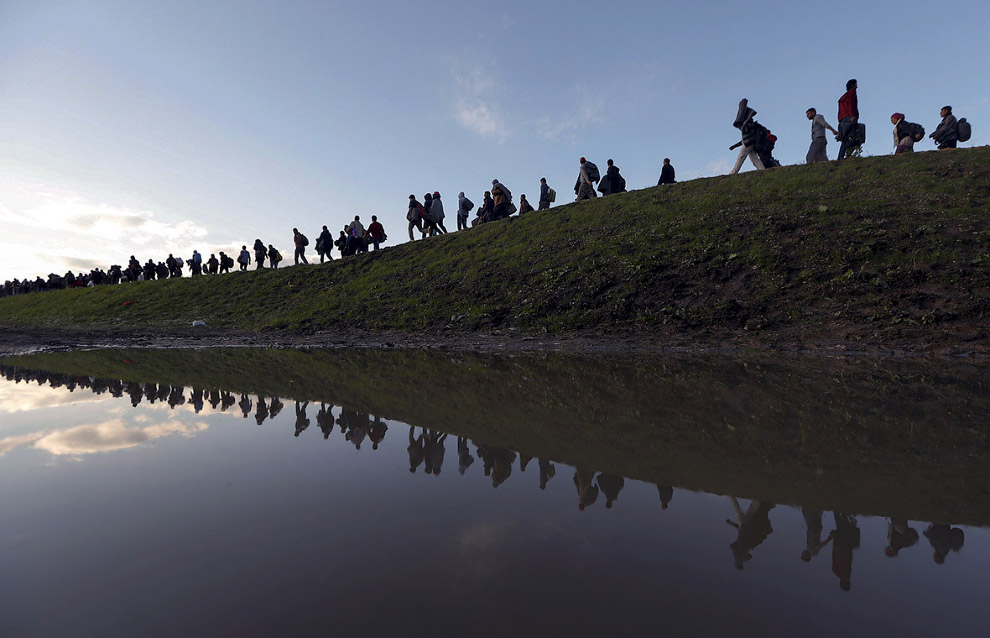 Мигранты и беженцы стройною толпой идут по Европе на окраине Брежице, Словения