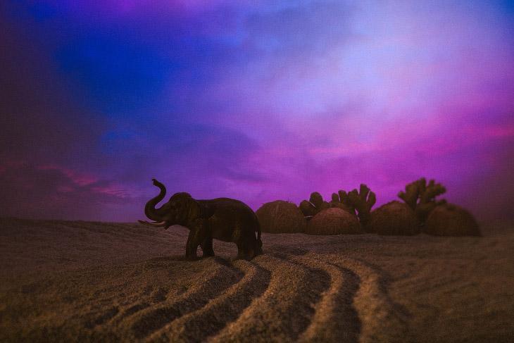 Игрушечный слон, части кокосового ореха и имбиря