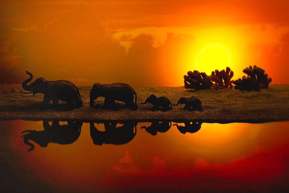 Стадо слонов и деревья из имбиря