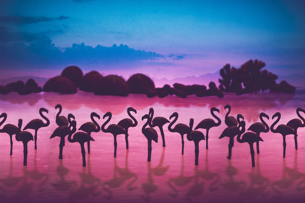 Фламинго на фоне кокосов, тамаринда и имбиря