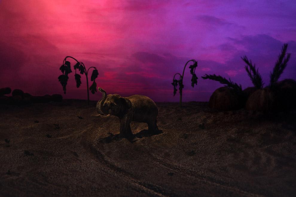 Слон на фоне пейзажа из петрушки, розмарина, тамаринда и кокосов