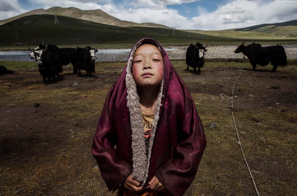 Кочевая жизнь на Тибетском плато