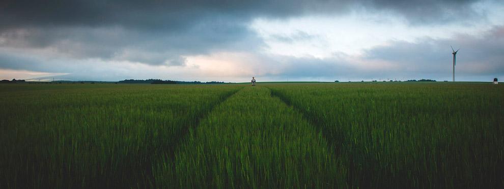 В полях Абердиншира, Шотландия