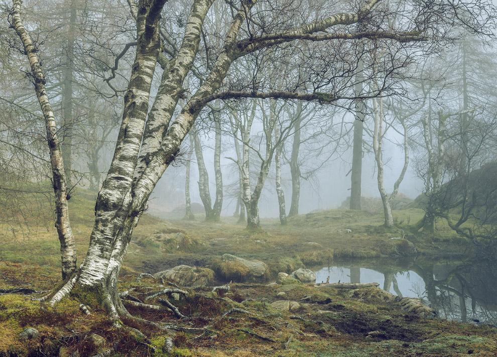 Графство Камбрия, Англия