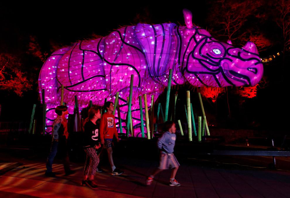 Световой носорог