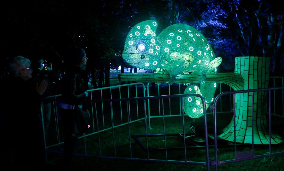 Хамелеон на светящемся дереве