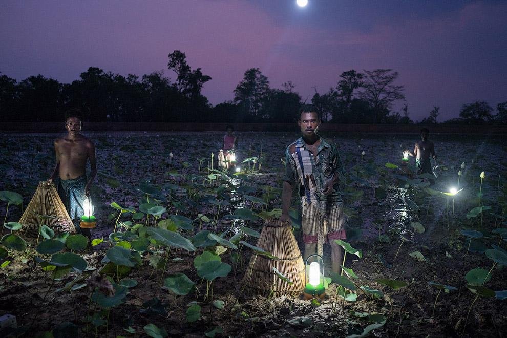 Примерно 1,1 миллиарда человек в мире живут без электричества