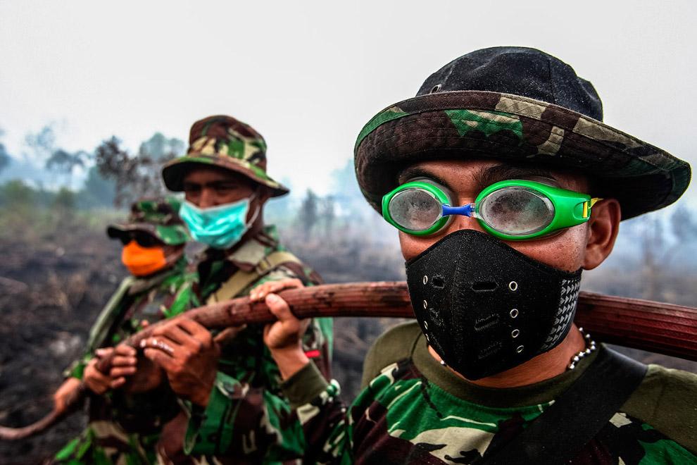 Разбор завалов после пожара в лесной местности на Суматре