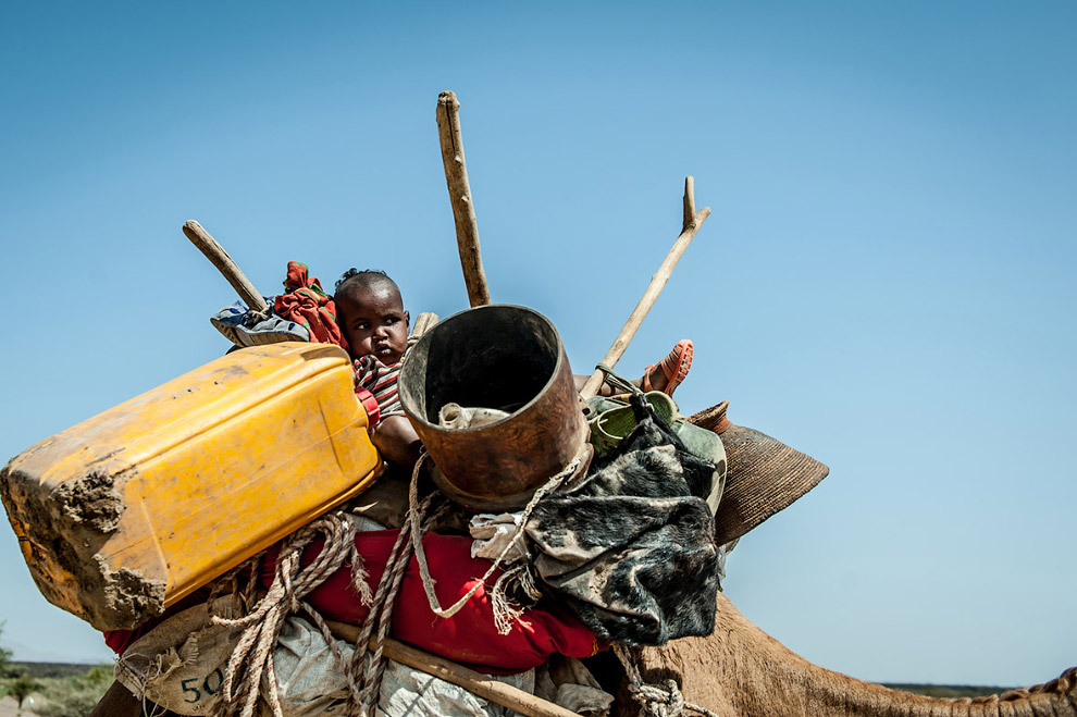 В Эфиопии сильнейшая засуха за последние 50 лет