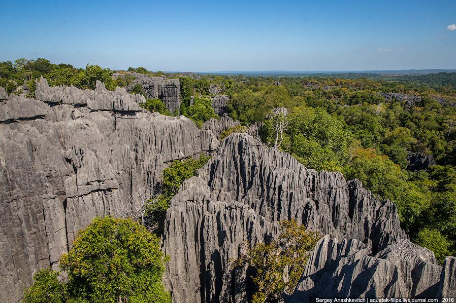 10 Это стоит увидеть своими глазами! Каменный лес Цинги