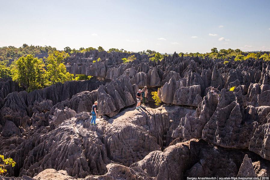 11 Это стоит увидеть своими глазами! Каменный лес Цинги