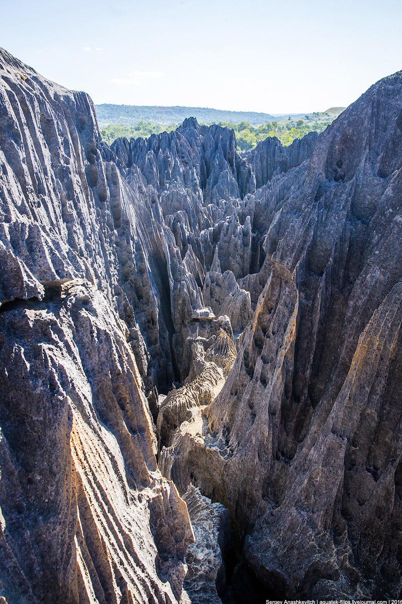 12 Это стоит увидеть своими глазами! Каменный лес Цинги