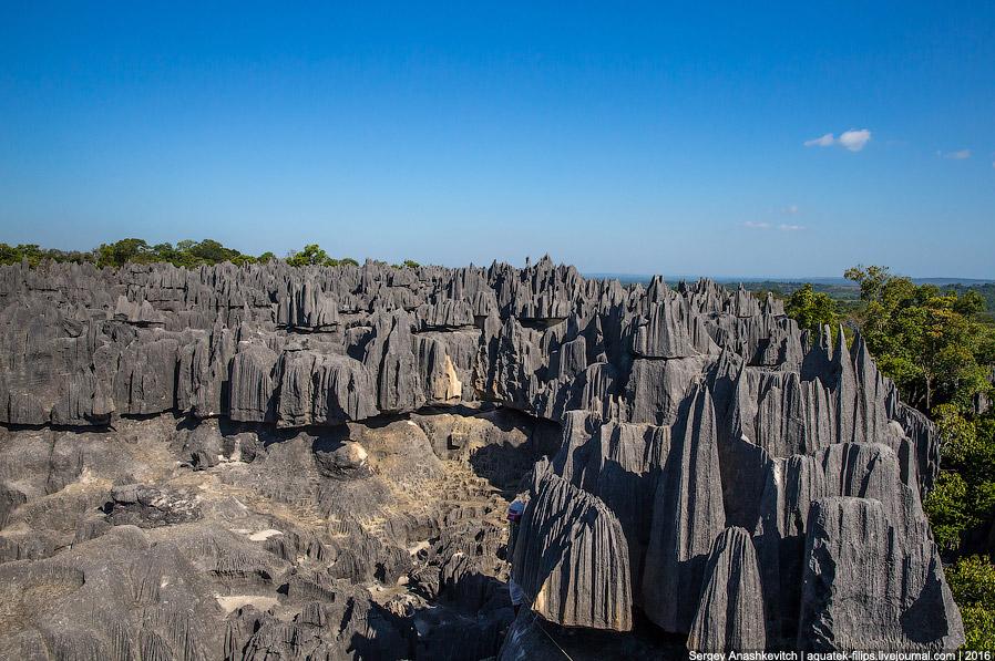 15 Это стоит увидеть своими глазами! Каменный лес Цинги