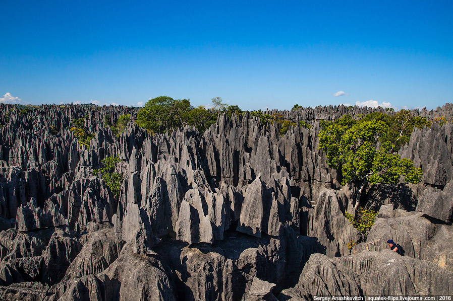 16 Это стоит увидеть своими глазами! Каменный лес Цинги