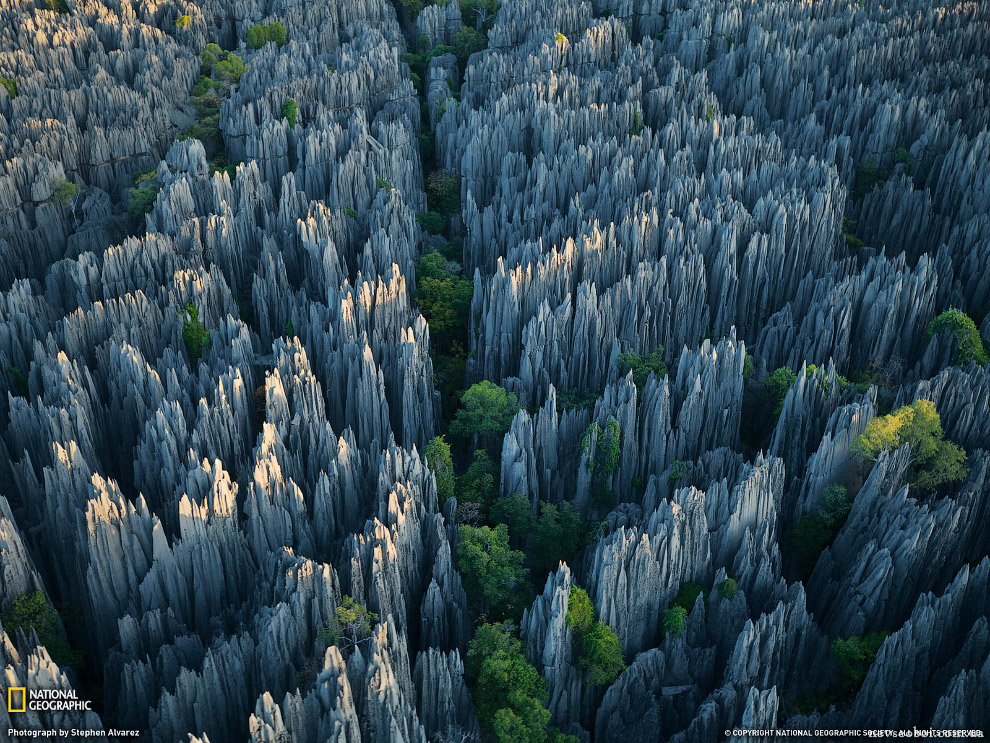25 Это стоит увидеть своими глазами! Каменный лес Цинги