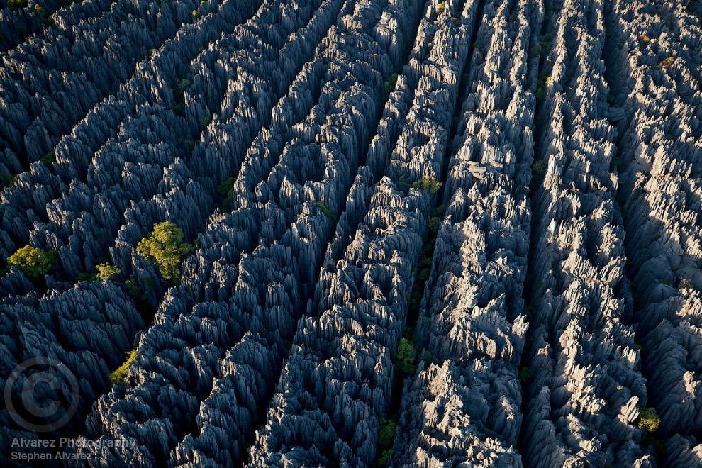26 Это стоит увидеть своими глазами! Каменный лес Цинги