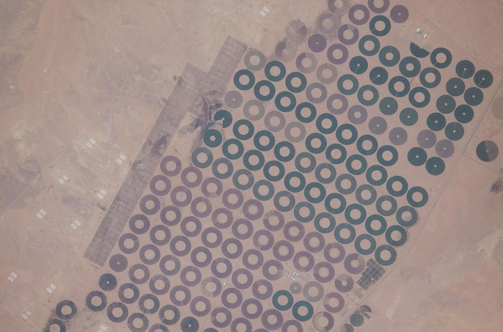 Системы орошения в Саудовской Аравии