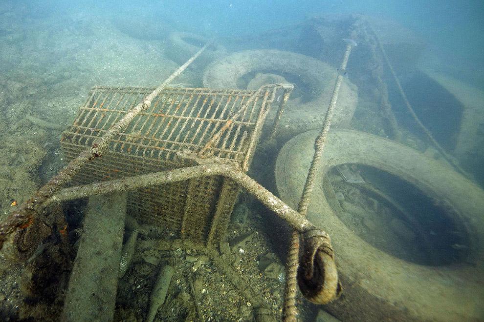 Торговые тележки и шины в гавани Марселя