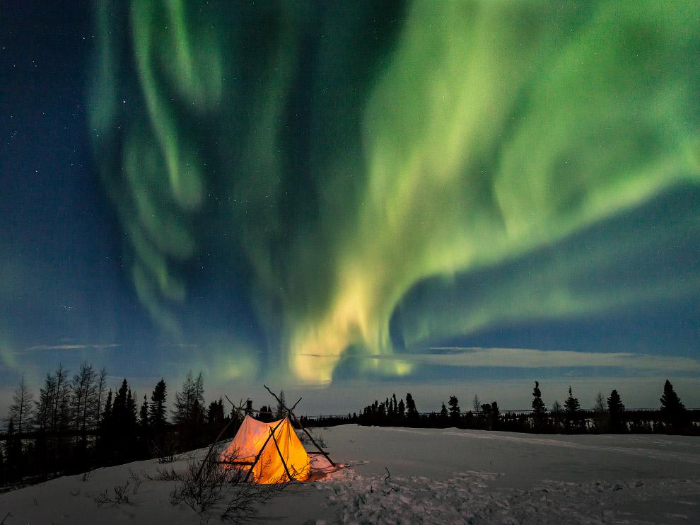 Арктические ночи