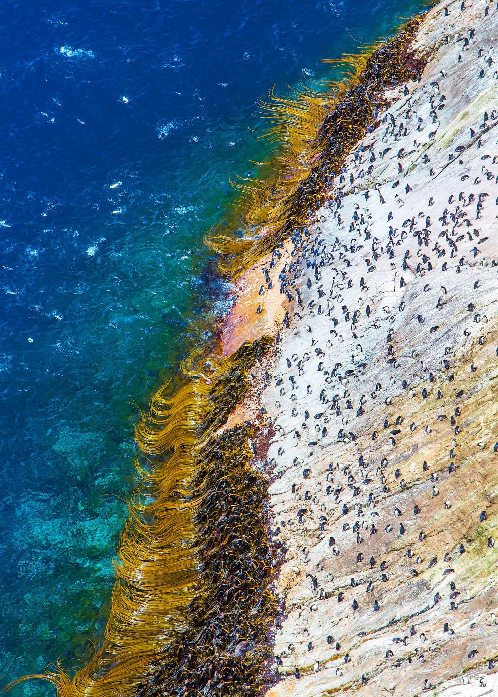 Крутые скалы, достигающие высоты 130 метров