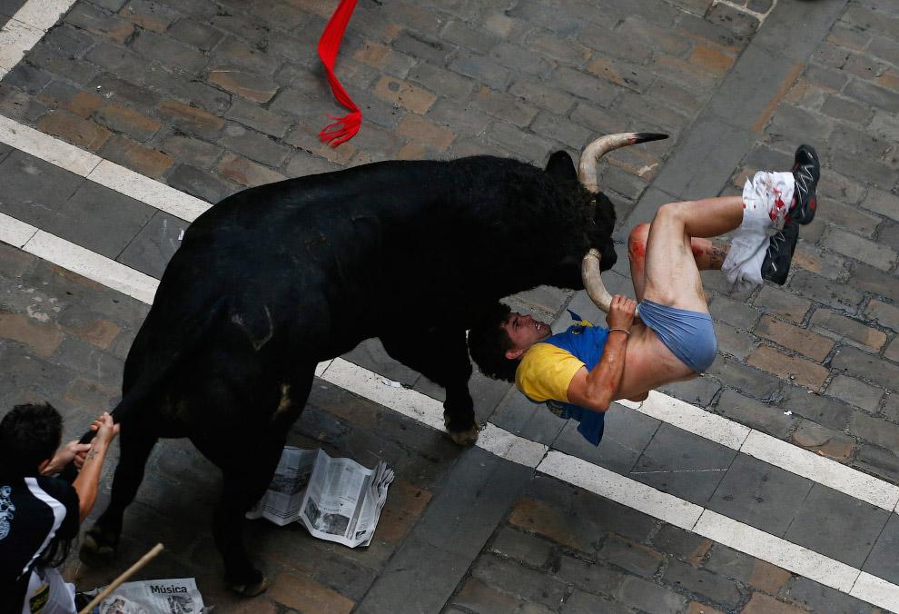 Панадение быка