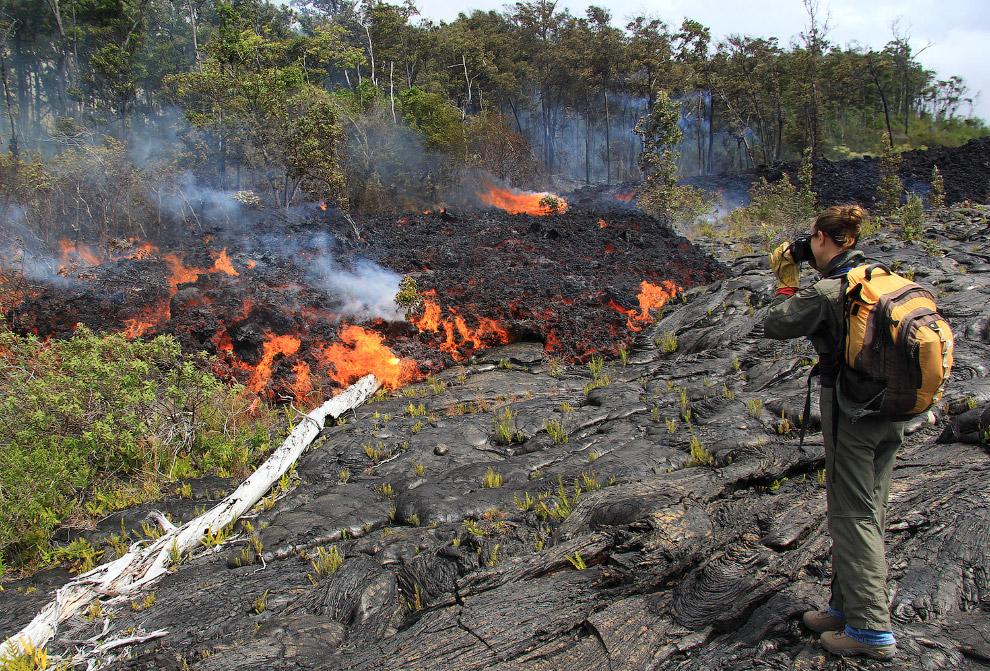 Поток лавы уничтожает на своем пути скраб и деревья,