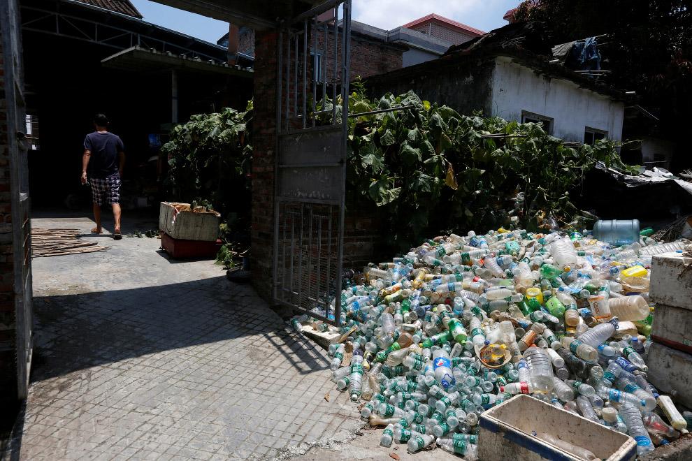 Этот сельский житель участвует в проекте по борьбе с переносчиками тропических болезней и разводит миллионы бактерий инфицированных комаров в доме