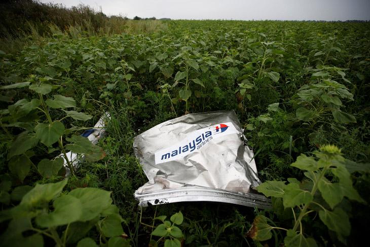 Обломки малазийского Боинга-777 в Донейкой области