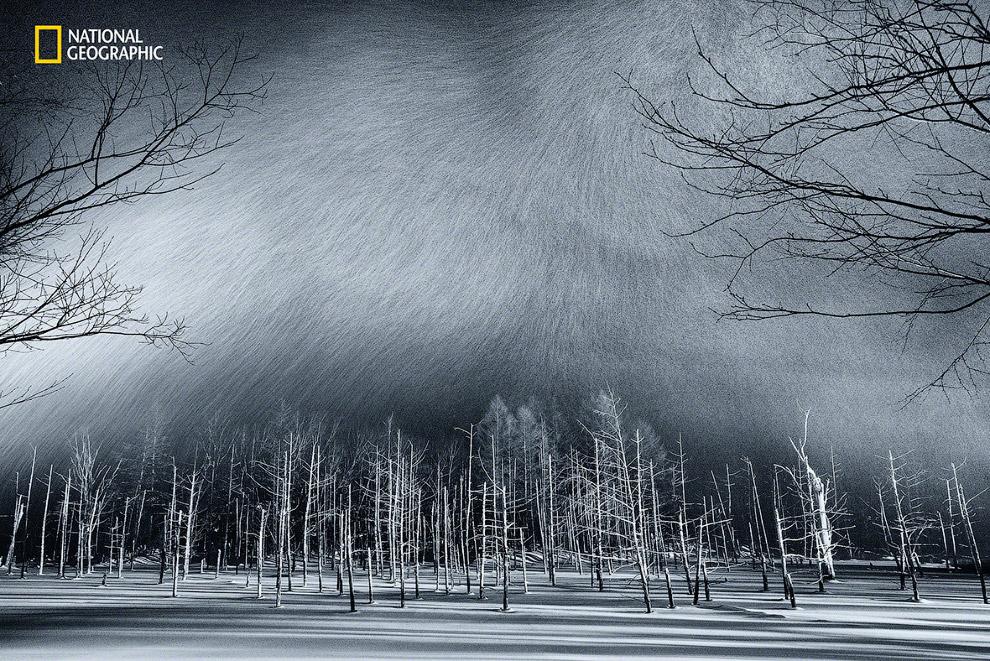 Замерзший пруд и снег в Хоккайдо