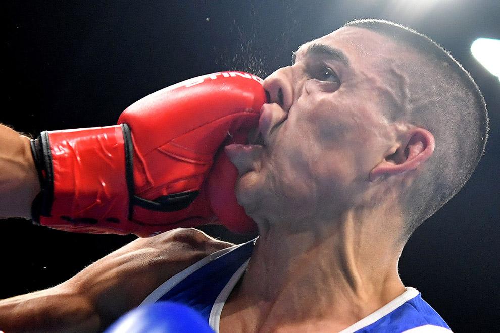 Лучшее лицо в боксе