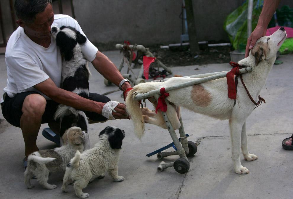 Примерка инвалидной коляски в спасательном центре в Чэнду, Китай