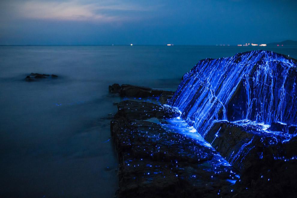 05s Волшебное свечение у берегов Японии