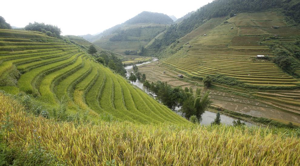Террасы к северо-западу от Ханоя