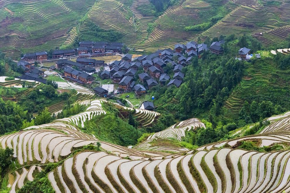 Рисовые террасы, расположенные в округе Юаньян в провинции Юньнань
