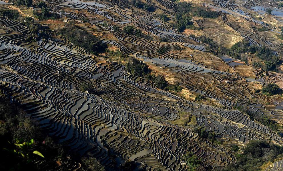 Бесконечные рисовые террасы, Китай