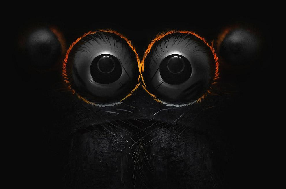 Глаза паука-скакуна