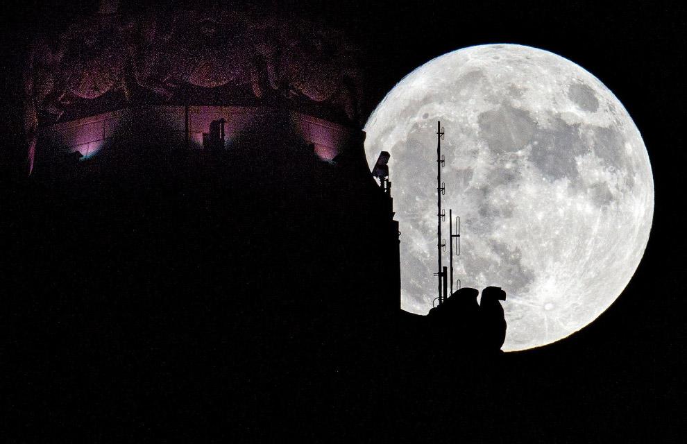 Огромная Луна в городе Колумбус, штат Огайо